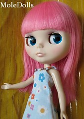Blythe Custom Commission N.36