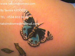 butterfly woman tattoo / kelebek bayan dvme (taksim beyolu dvmeci) Tags: woman art tattoo artist femme models drawings istanbul tattoos taksim examples vrouwen tatouage bayan mannen kiz modle modelleri dovme izimler dovmeciler taksimdovme dovmemodelleri dovmesi