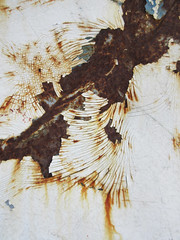 Swirls of cracked paint over a rusty base (Monceau) Tags: rust swirls curves cracked peeling paint white abstract