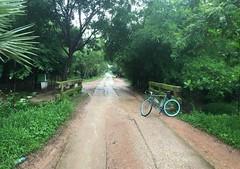 Myanmar, Yangon Region, Southern District, Twantay Township, Kha Loke Village Tract (Die Welt, wie ich sie vorfand) Tags: myanmar burma bicycle cycling surly steamroller yangon rangoon yangonregion southerndistrict twantaytownship twantay khaloke