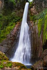 Catarata Toro Amarillo (34 of 227).jpg (ingbalfaro) Tags: neutraldensity catarata esencialcostarica waterfall toroamarillo nature