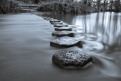 Stepping Stones II, Box Hill (Dave Searl) Tags: water stepping stones long exposure river mole surrey mono box hill