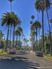 The streets of Beverly Hills  (megmcabee) Tags: california beverlyhills usa vacation westcoast