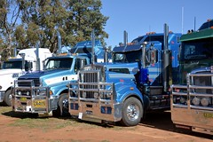 Weethalle Show (quarterdeck888) Tags: trucks truckies transport australianroadtransport roadtransport lorry primemover bigrig overtheroad class8 heavyvehicle highway road truckphotos nikon d7100 movingtrucks jerilderietrucks jerilderietruckphotos quarterdeck frosty expressfreight generalfreight logistics overnightfreight highwayphotos semitrailer semis semi flickr flickrphotos weethalle weethalletruckshow weethalleshow weethalleshow2016 display truckshow countryshow kenworth t904 sterling