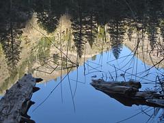 Granite Cliffs Reflected in Olaine Lake (Mike Dole) Tags: johnmuirtrail california sierranevada anseladamswilderness inyonationalforest olainelake