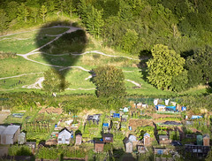 Sailing over the Allotments (Carolbreeze99) Tags: bristol balloonfest balloon flight shadow goldenhour detail allotments horticulture homely sail fromabove green park landscape scape garden gardening lightshade