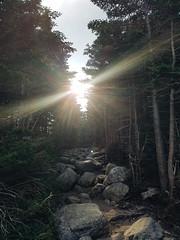 2016-08-13 02.46.22 1 (This is Awkward) Tags: maine baxterstatepark mtkatahdin mountkatahdin climbing hiking nature mountainclimbing mountain camping