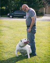 Joe and the bull dog (bratli) Tags: dog bulldog friendly big canine offleash blackmud ravine park