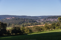 Dilsberg in August 2016 XII (boettcher.photography) Tags: august summer sommer 2016 neckargemnd germany deutschland dilsberg badenwrttemberg rheinneckarkreis meadow wiese sashahasha boettcherphotography
