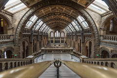 Natural History Museum, London (SNeequaye) Tags: london england uk unitedkingdom nikon nikon105mmfisheye fisheye riverthames towerbridge theshard canarywharf londonunderground underground tube water still slowshutter slowexposure eastlondon southlondon gherkin leendgraduatedfilter leefilter neutraldensityfilter nd blackwhite bw black white view thecity thesquaremile skyline bigben londoneye palaceofwestminster housesofparliament londonbridge southwarkbridge stpancrasinternational nikond750 tamron tamron2470mm 2470mm millenniumbridge londonbridgestation sun sunset sunrise theview hungerfordbridge southbanktower waterloobridge nikon1635mm 1635mm naturalmuseum naturalhistorymuseum museum history natural