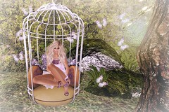 Siobban - Pink Morning (siobbans) Tags: secondlife lumipro garden butterflies swing myspace reign {hh} tableauvivant trompeloeil