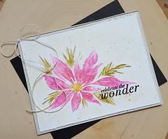 wonder 2 (Rosemary D.) Tags: pennyblack redstar thewonder