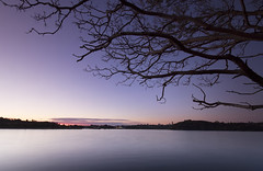 East Balmain (Bass Photography) Tags: balmain leichhardt innercityofsydney innerwest innerwestcouncil sunset water sydneyharbour longexposure magenta