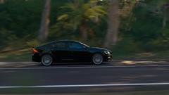 Subtle (KiroKai Photography) Tags: forza horizon 3 australia volvo s60 polestar forest shadows trees green black panning speed profile fast sideview