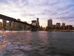 New York(944)