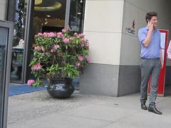 IMG_0205 (fluppes_be) Tags: male men socks nice shoes legs business but fret maninsuit bloke bulge hotguy hotbloke meninjeans malelegs manbulge meninsuit manjeans malesuit suitmeninsuit hotmalelegs manhotsocks