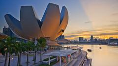 Sunrayed Lotus (Scholesville) Tags: city sunset lights singapore cityscapes rays sunrays epic mbs asm marinabay artsciencemuseum quackdamnyou scholesville