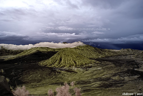 Ancient Bromo (IR)