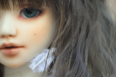New Eyes  (. Paillette .) Tags: blue ed eyes doll bjd milky 42 abjd dreamcatcher seagreen enchanteddoll unoa leeke unoalusis attraperves