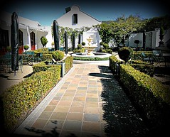 wine estate (WITHIN the FRAME Photography(5 Million views tha) Tags: holiday path hedge westerncape wineestate lanzerac