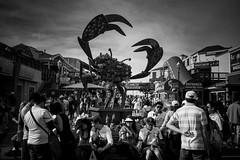 DSC02989 (Suraj Balchand) Tags: sanfrancisco blackandwhite streetphotography giantcrab sanfranciscopier