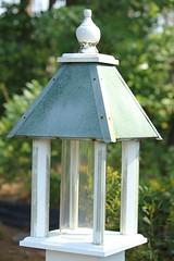 house bird canon tube 55250 t2i