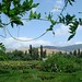 "Bronté, Sicily • <a style=""font-size:0.8em;"" href=""http://www.flickr.com/photos/76223813@N06/7506933934/"" target=""_blank"">View on Flickr</a>"