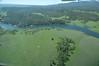 MVF_HFK_AER_062309_00484 (BlueCloudSpatial) Tags: usa river nikon aerial caldera aerialphoto 2009 ecosystem lighthawk aerialphotograph coldwater d300 baseline mvf iphotooriginal jtm henrysfork henryslake aerialpictures macrophytes june2009 october2009 062309 tommcmurray henryslaketoislandparkdam marineventuresfoundation hffbluecloud1492 hffbluecloud bluecloudmaster1492