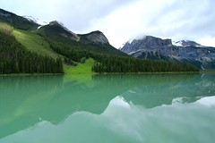 Emerald Lake Reflections (Cole Chase Photography) Tags: summer canada reflection canon reflections alberta banff albertacanada banffnationalpark t3i emeraldlake yohonationalpark