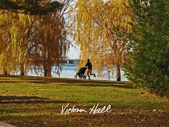 IMG_0270 - M (Photo Phlix by Victoria Hall) Tags: park ontario canada river landscape stroller ottawa jogging victoriahall ottawariverparkway photophlix