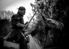 Hero (Faugel) Tags: horse nikon sweden sm swedish medieval tournament riding sword knight nikkor d800 darkages warhorse hovdala garvas nikond800 nikkor28300 rikstornering tornespel garvasafnattavaara arbogaraedarius hovdalaslotthässleholm