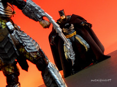 Batman Dead End round 2 (different focus) (metaldriver89) Tags: dc arkham knight arkhamknight arkhamcity dccollectibles cowl batman darkknight dark custom cloth cape customcape dcuc universe classics batmanunlimited legacy unlimited actionfigure action figures toys mattel matteltoys new52 new 52 brucewayne bruce wayne acba articulatedcomicbookart articulated comic book art movie the thedarkknight thedarkknightrises dccomics batsignal bat signal gotham gothamcity actionfigures figure toyphotography toy photoshop indoor predator neca shfiguarts bandai deadend necatoys