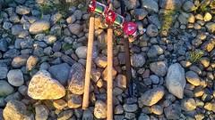 WP_20160707_01_31_53_Pro (www.ilkkajukarainen.fi) Tags: reel fishing abu ambassadeur abucargia teno tana river finland suomi sport lust fiske shakespeare berkley ranta kivet rock