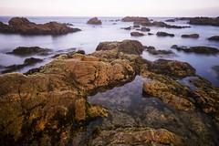 asilomar morning pool (hbphototeach) Tags: approved asilomarbeach pacific grove california sunrise seascape landscape rocks longexposure coast