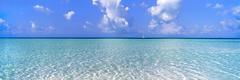 Turcks and Caicos (Tom Cuccio) Tags: turksandcaicos paradise ocean blue taylor bay providenciales gx617 film landscpae 120 velvia 50