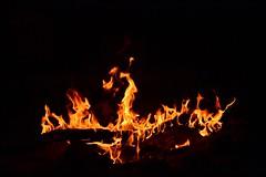 Dragn en el fuego (fernandez1594) Tags: fogata figura nature dragn fuego fire