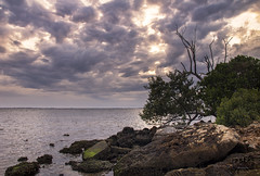 Casting the Mood (SteveFrazierPhotography.com) Tags: poncedeleon historicalpark puntagorda charlottecounty florida fl charlotteharbor peaceriver sunset shoreline mangroves rocks clouds horizon seascape landscape scene scenery stevefrazierphotography may2016 water waves beautiful shore