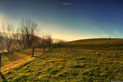 Walking in Light (Kevin_Jeffries) Tags: light golden nature hill fencepost tree nikon jeffries d90 soft shadows sunlight new