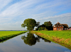 Forest landscape (JaapCom) Tags: jaapcom landscape landed clouds water farmhouse trees dutch netherlands holland wezep paysbas natural natuur
