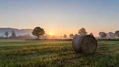 Misty sunrise (Sebo23) Tags: sonnenaufgang sunrise sunbeams sunrays sonnenstrahlen morgenstimmung morninglight morgenlicht espasingen canon6d canon24704l gegenlicht