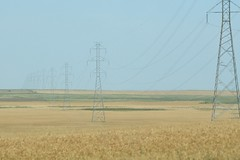 IMG_1073 (TMM Cotter) Tags: alberta ab landscape wires high tension electricity towers field