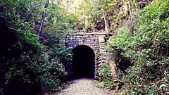 the dark unknown... (BillsExplorations) Tags: tunnel stewarttunnel traintunnel railroad railroadtunnel railway trail path old vintage historic badgerstatetrail wisconsin