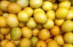 lemons (friendlydrag0n) Tags: lemon background citrus fruit color colour