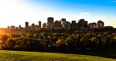 Highlighting Edmonton (Wendy Oor) Tags: city sun light scenery skyline cityscape bildings trees fall colors