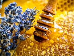 Some Honey? (Sorin Olteanu) Tags: samsungsmart samsungcamera sam samsung nx2000 nx nxlens natural nature honey home sweet food foodporn f8 macromondays sweetspotsquared bright honeycomb