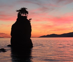 Great Sunset (How.I.E) Tags: clouds pink red orange sky twilight summer dusk night evening beautiful nice cool wow fab awesome amazing tree silhouette black mountains rocks rock siwash stanley park