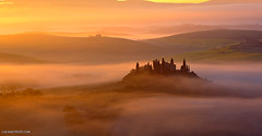 Tuscan meadow: in a dream of father. (lucagiustozzi.com) Tags: misty fog landscape tuscany tuscan