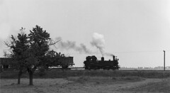 99 1542-2 (RhinopeteT) Tags: germany railway steam east oschatzmugeln