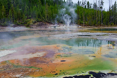 Norris Geyser Basin (bhophotos) Tags: travel usa nature yellow landscape geotagged nationalpark nikon yellowstonenationalpark yellowstone wyoming geyser thermal norris hotsprings ynp d700 2470mmf28g cracklinglake bruceoakley greennorrisgeyserbasin