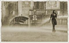 A Girona quan plou...  Plou !!! - 255 (Pep Companyó - Barraló) Tags: de girona pont temps pedra quan flors pluja josep plou a companyo barralo